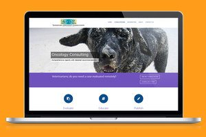 veterinary consultants case study